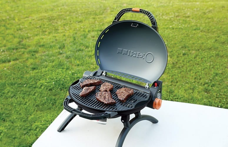 Meat On Portable Grill