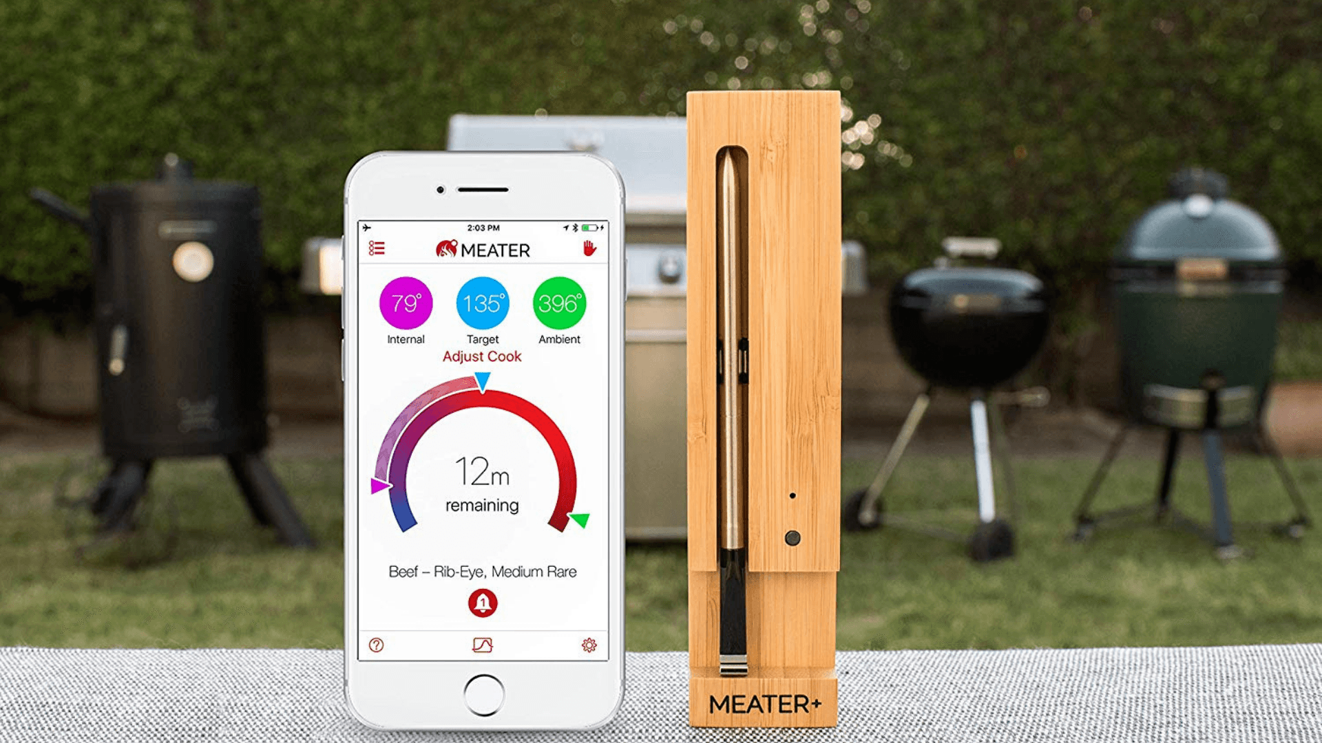Picture of MEATER+165ft Long Range Smart Wireless Meat Thermometer staged outside with BBQs